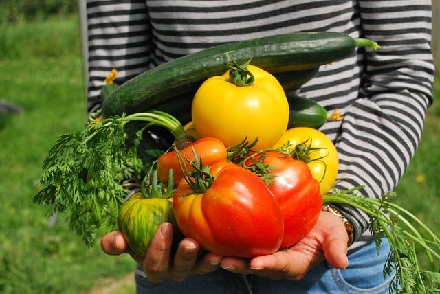 A Pochi Passi BB Blog Orti urbani verdura biologica